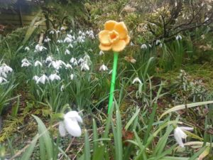 Handmade Daffodil in the Garden Fitting in Knitting Children Quick Craft Ideas