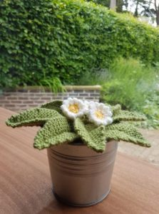 Handmade Knitted Primrose Plant in Pot Finished Fitting in Knitting Children Quick Craft Ideas