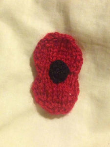 Poppy by Melainey Fitting in Knitting