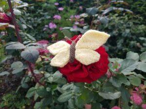 Handmade Knitted Butterfly on Rose Fitting-in-Knitting